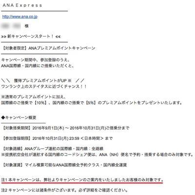ana_pp.jpg